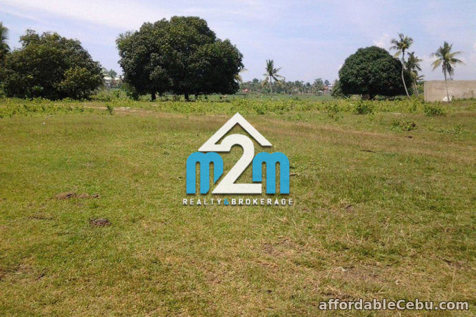 2nd picture of North Camp Subdivision Lot for Sale For Sale in Cebu, Philippines