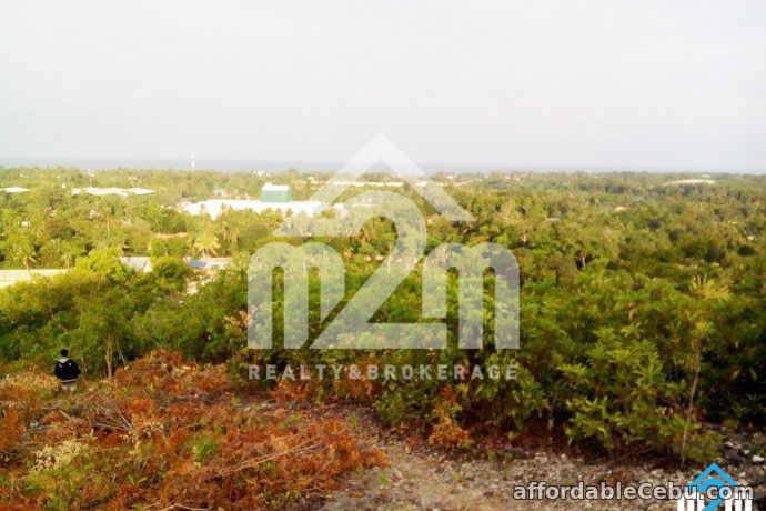4th picture of Sergs Ville(LOT ONLY) For Sale in Cebu, Philippines