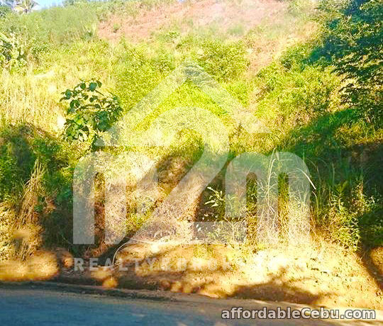 3rd picture of Lot For Sale - Sunflower Valley(LOT ONLY) Bagalnga, Compostela Cebu For Sale in Cebu, Philippines