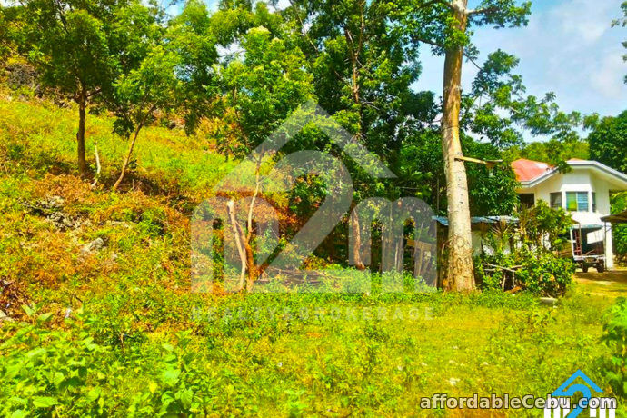 5th picture of Fritz Ville Subdivision(LOT ONLY)Cogon, Compostela, Cebu For Sale in Cebu, Philippines