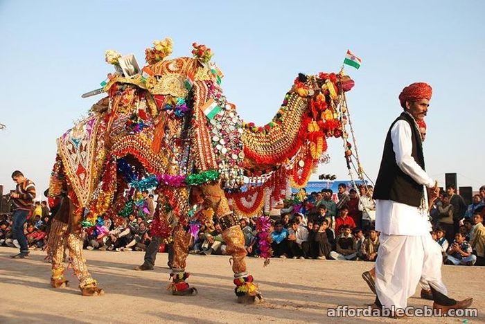 3rd picture of Pushkar Camel Fair 2018 Offer in Cebu, Philippines