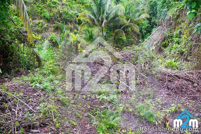 5th picture of Aimee Homes(LOT ONLY) Linao, Minglanilla, Cebu For Sale in Cebu, Philippines
