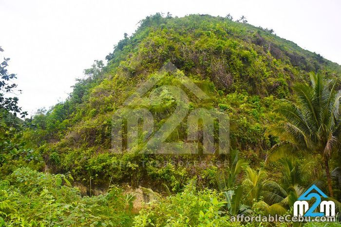 4th picture of Aimee Homes(LOT ONLY) Linao, Minglanilla, Cebu For Sale in Cebu, Philippines