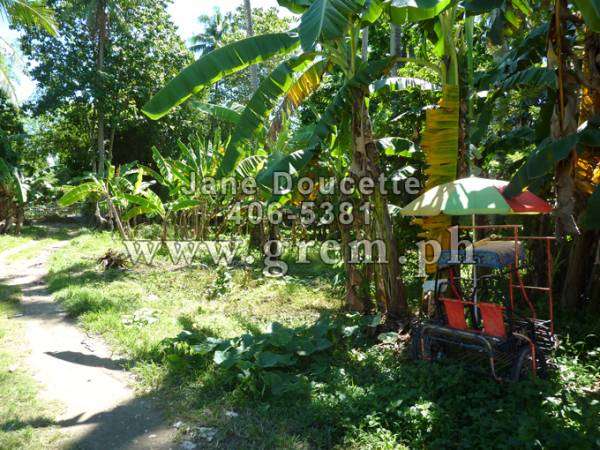 2nd picture of FORSALE RESIDENTIAL LOT.  COTCOT, LILOAN PHP2300/SQM For Sale in Cebu, Philippines