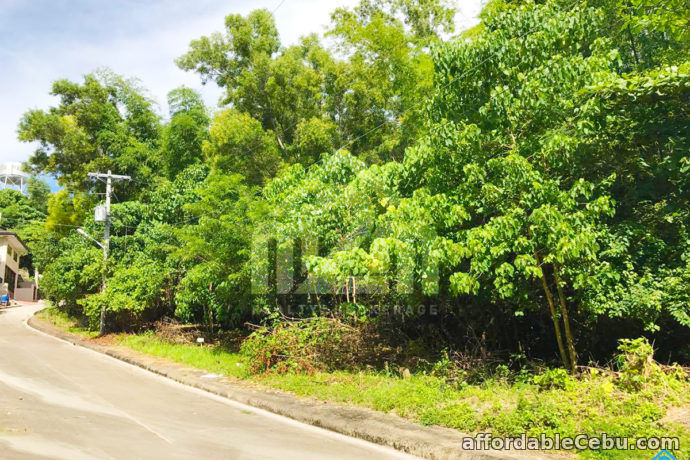 5th picture of Vista Grande Subdivision(LOT ONLY) Bulacao, Talisay City, Cebu For Sale in Cebu, Philippines