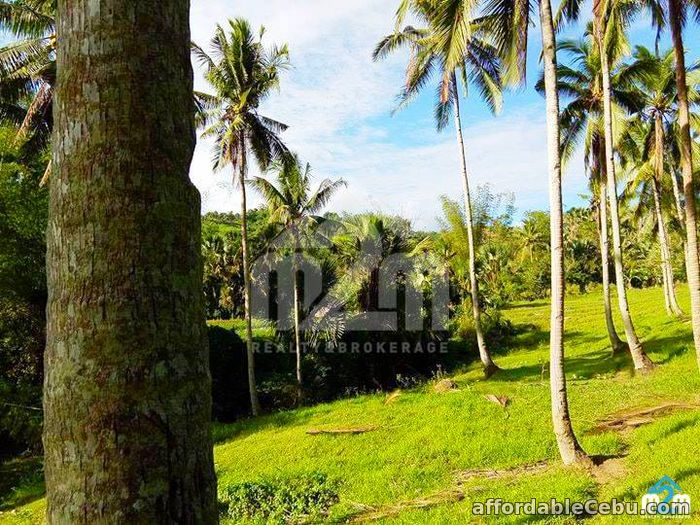 2nd picture of Green Valley Heights(LOT ONLY) Babag, Cebu City For Sale in Cebu, Philippines