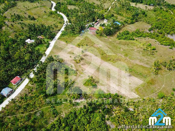 5th picture of Justina Hills Estate(LOT ONLY) Calangcang, Badian, Cebu For Sale in Cebu, Philippines