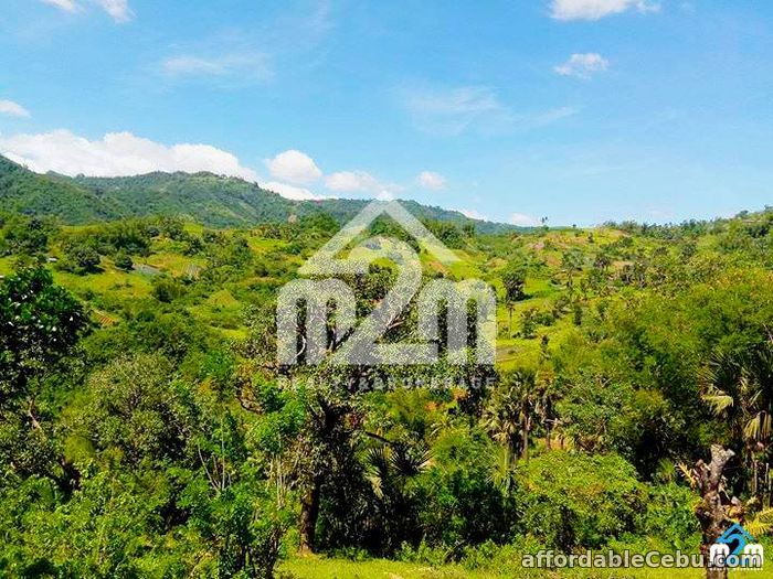 4th picture of Green Valley Heights(LOT ONLY) Babag, Cebu City For Sale in Cebu, Philippines