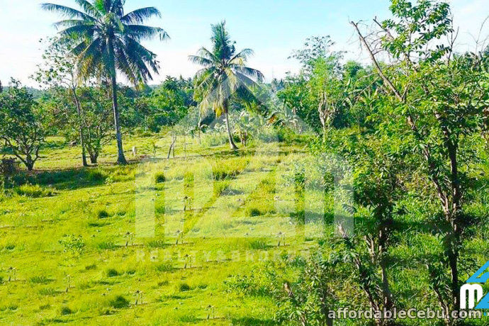 3rd picture of St. Joseph Ville(LOT ONLY) Can-asujan Carcar City, Cebu For Sale in Cebu, Philippines