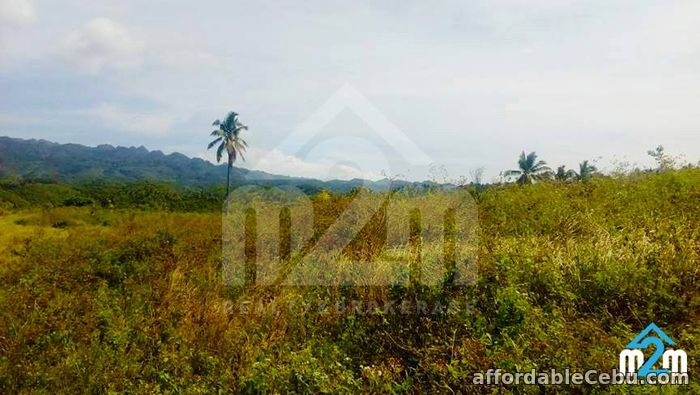 3rd picture of Justina Hills Estate(LOT ONLY) Calangcang, Badian, Cebu For Sale in Cebu, Philippines