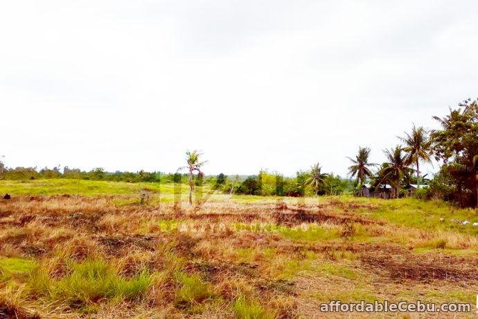 4th picture of Casa Grande Subdivision(Lot Only) Argawanon, San Remigio, Cebu For Sale in Cebu, Philippines