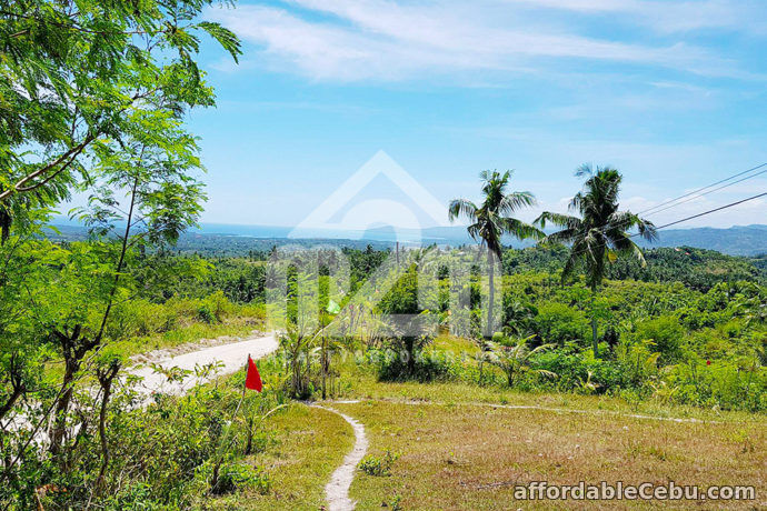 4th picture of Amariah Heights Subdivision(LOT ONLY) Saay Can asujan Carcar City, Cebu For Sale in Cebu, Philippines