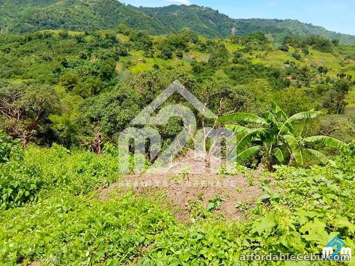 5th picture of Green Valley Heights(LOT ONLY) Babag, Cebu City For Sale in Cebu, Philippines