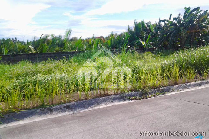 3rd picture of Corona Del Mar(LOT ONLY) Talisay City, Cebu For Sale in Cebu, Philippines