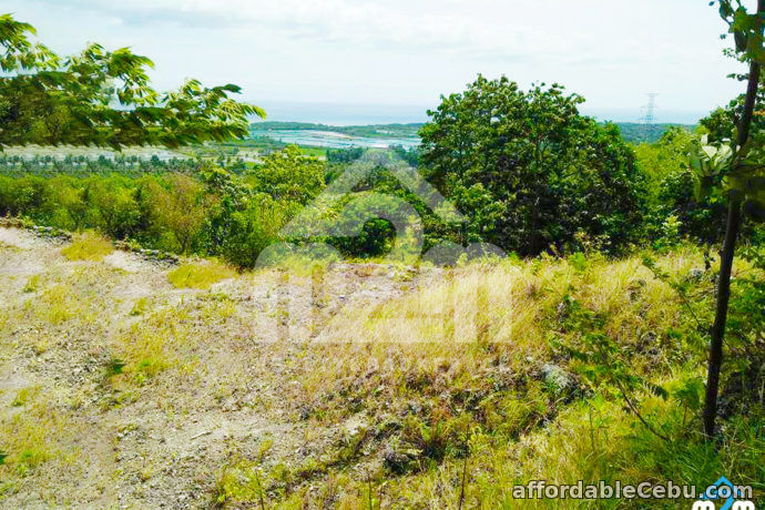 4th picture of Top Ville Subdivision(LOT ONLY) Can-asujan,Carcar, Cebu For Sale in Cebu, Philippines