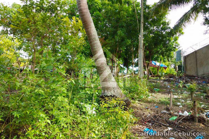 5th picture of Welstand Heights(LOT ONLY) Maghaway, Talisay City, Cebu For Sale in Cebu, Philippines