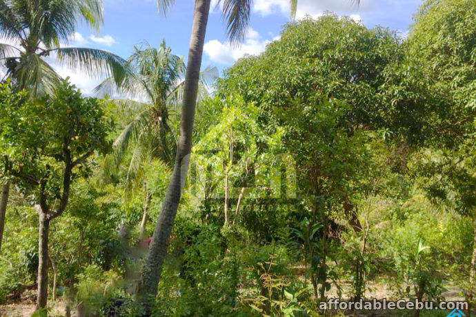 2nd picture of Welstand Heights(LOT ONLY) Maghaway, Talisay City, Cebu For Sale in Cebu, Philippines
