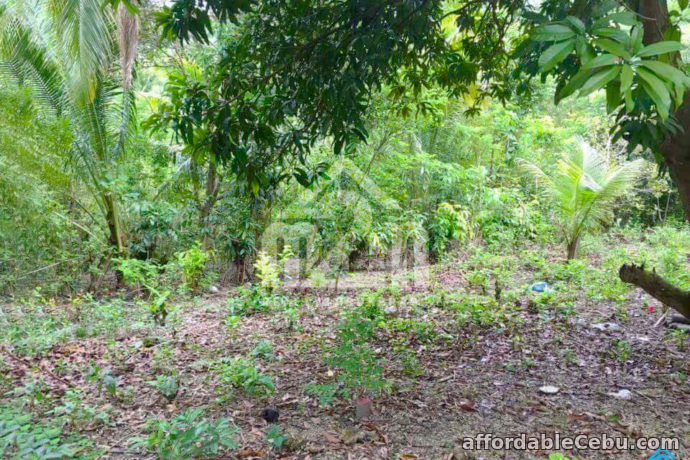 3rd picture of Welstand Heights(LOT ONLY) Maghaway, Talisay City, Cebu For Sale in Cebu, Philippines