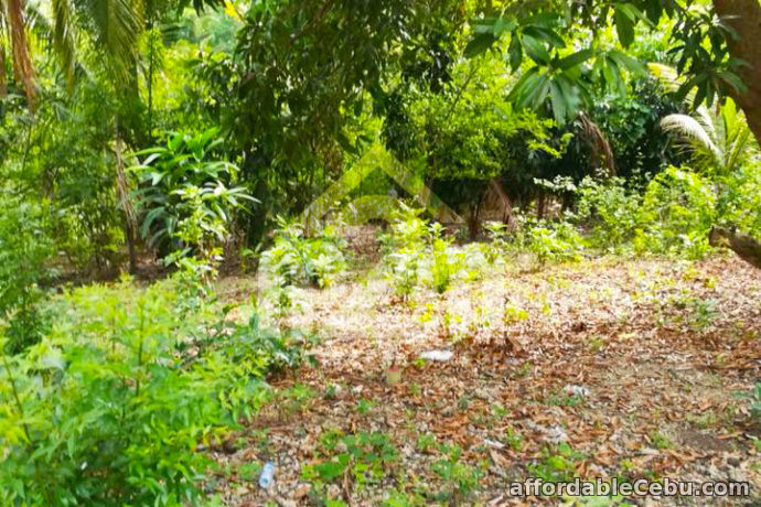 4th picture of Welstand Heights(LOT ONLY) Maghaway, Talisay City, Cebu For Sale in Cebu, Philippines