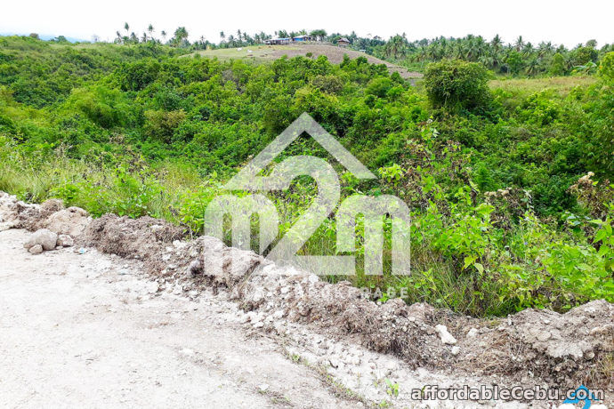 1st picture of Haribel Heights Subdivision(LOT ONLY) Can-asujan, Carcar City For Sale in Cebu, Philippines