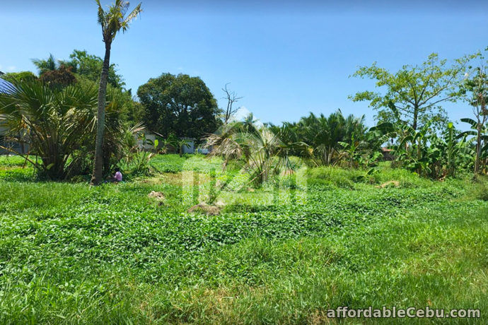 1st picture of Jordan Avenue 2(LOT ONLY) Brgy. Nangka, Consolacion, Cebu For Sale in Cebu, Philippines