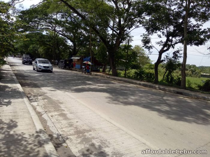 1st picture of Toledo City,  Industrial Lot For Sale in Cebu, Philippines