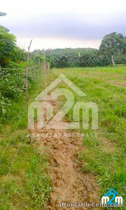 3rd picture of Zac Ville(LOT ONLY) Danlag, Consolacion Cebu For Sale in Cebu, Philippines