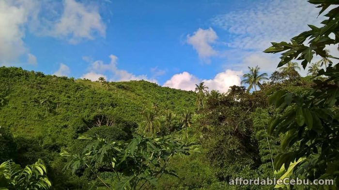 3rd picture of RUSH SALE!  Buhisan, Cebu City Land for only P5,000.00/sq. m. negotiable For Sale in Cebu, Philippines