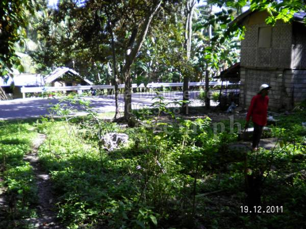 2nd picture of PHP 200/SQM ONLY LOT FORSALE! For Sale in Cebu, Philippines