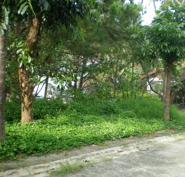 1st picture of 3050SQM CATARMAN TAYUD LILOAN For Sale in Cebu, Philippines