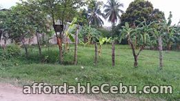 1st picture of For Sale Residential or Industrial Lot in Talisay City Cebu near SRP For Sale in Cebu, Philippines