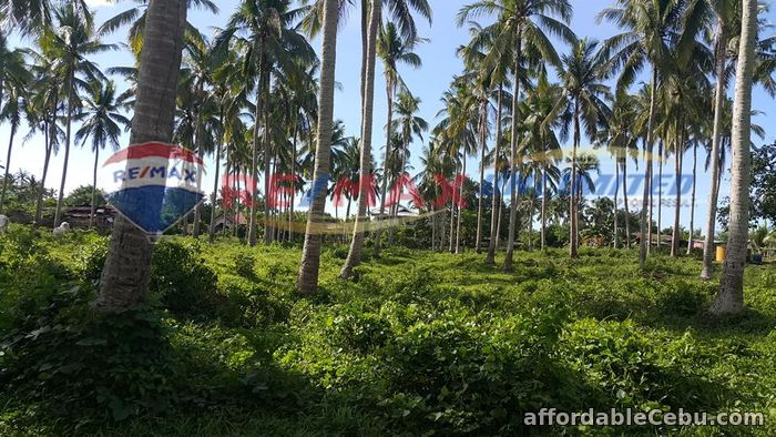 3rd picture of PADRE GARCIA BATANGAS FARM LOT FOR SALE For Sale in Cebu, Philippines