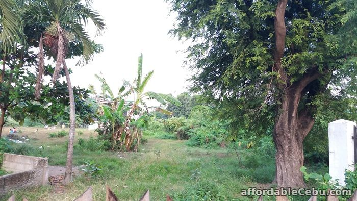 4th picture of Residential or Industrial Lot for sale near SRP Talisay City Cebu For Sale in Cebu, Philippines