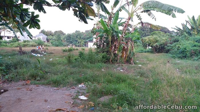 3rd picture of Residential or Industrial Lot for sale near SRP Talisay City Cebu For Sale in Cebu, Philippines