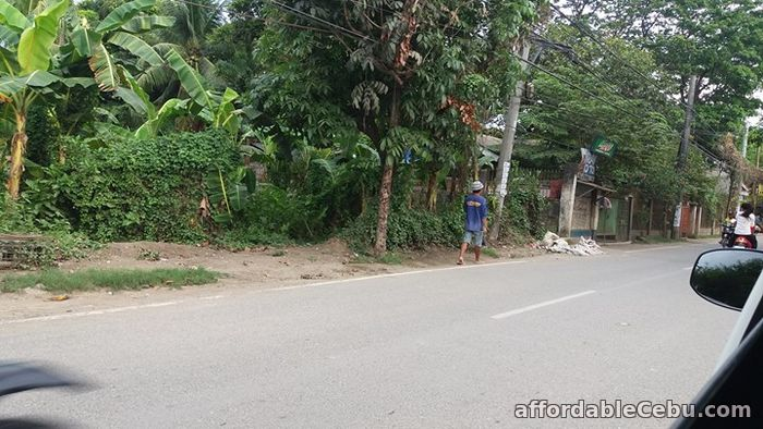4th picture of For Sale Residential or Industrial Lot in Talisay City Cebu For Sale in Cebu, Philippines