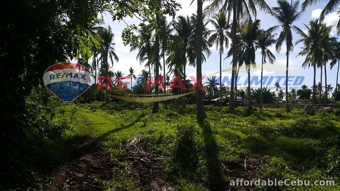 2nd picture of PADRE GARCIA BATANGAS FARM LOT FOR SALE For Sale in Cebu, Philippines