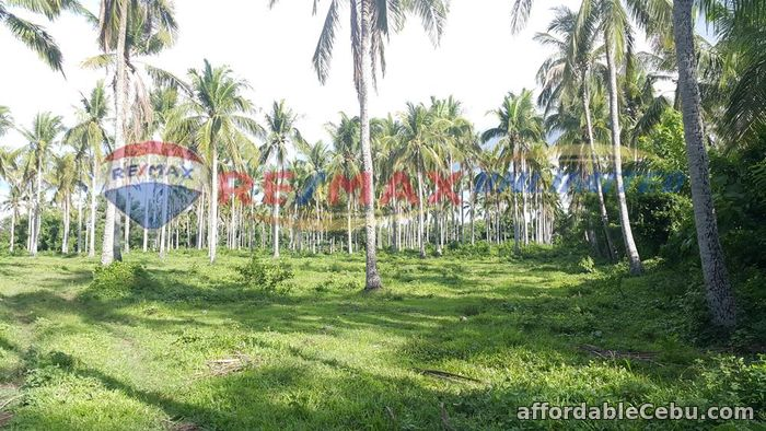 1st picture of PADRE GARCIA BATANGAS FARM LOT FOR SALE For Sale in Cebu, Philippines