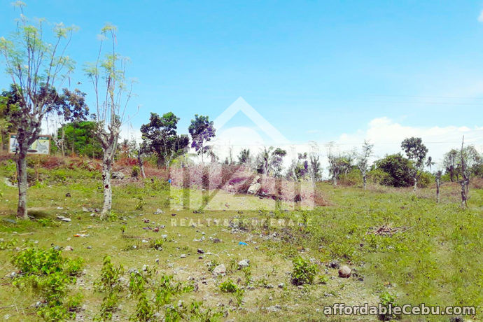 2nd picture of Greenview Subdivision(LOT ONLY) Can-asujan, Carcar City, Cebu For Sale in Cebu, Philippines