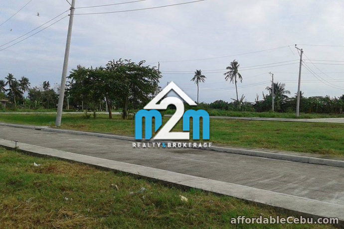 4th picture of Dancing Sun(LOT ONLY) Bolinawan, Carcar City, Cebu For Sale in Cebu, Philippines