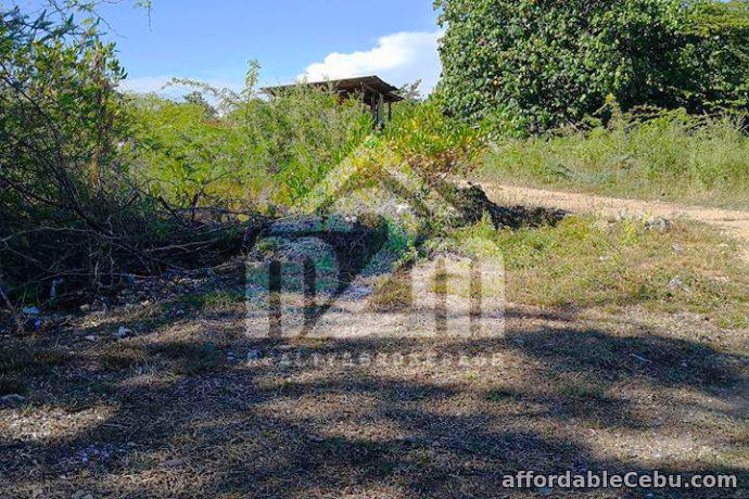2nd picture of Tierra Rica Subdivision(LOT ONLY) Kalawisan, Lapu-Lapu City For Sale in Cebu, Philippines