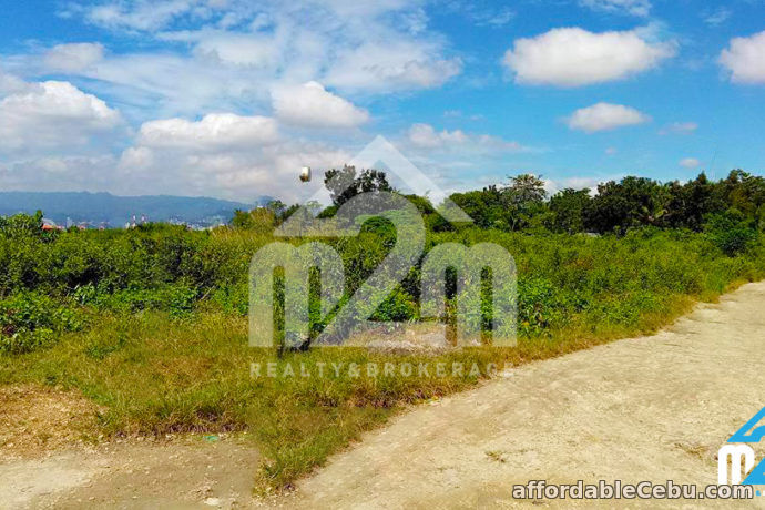 5th picture of Gracetin Ville(Lot Only) Canjulao, Lapulapu City, Cebu For Sale in Cebu, Philippines