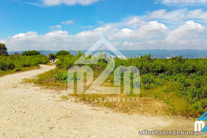 3rd picture of Gracetin Ville(Lot Only) Canjulao, Lapulapu City, Cebu For Sale in Cebu, Philippines