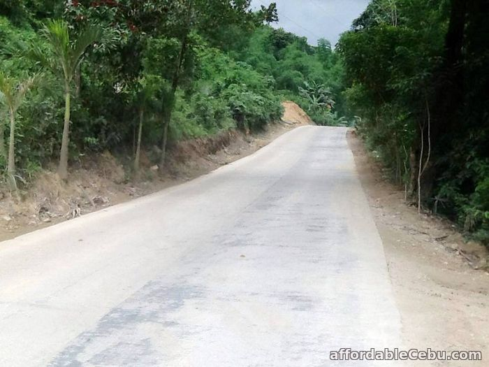 2nd picture of LOT Only 5 Years To Pay NO Interest For Sale in Cebu, Philippines