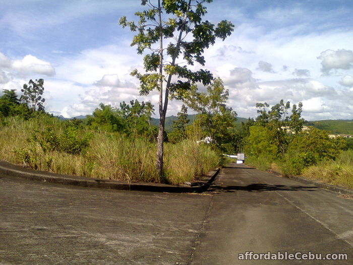 3rd picture of Lots for sale at Monte Verde De Cebu in Consolacion For Sale in Cebu, Philippines