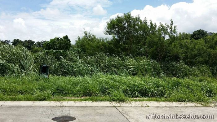 2nd picture of For Sale Ayala Westgrove Heights 443sqm For Sale in Cebu, Philippines