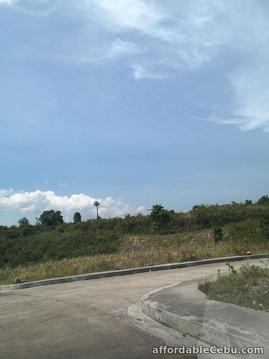 4th picture of residential lot for investment in consolacion cebu For Sale in Cebu, Philippines