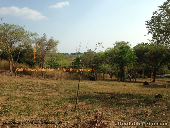 1st picture of Anvaya Cove Lot for Sale in Mango Grove For Sale in Cebu, Philippines