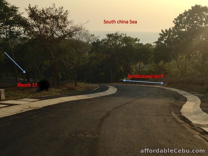 2nd picture of Anvaya Cove Lot for Sale in Mango Grove For Sale in Cebu, Philippines