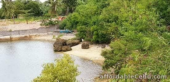 2nd picture of Resedential Beach lot for Sale in Bogo City For Sale in Cebu, Philippines