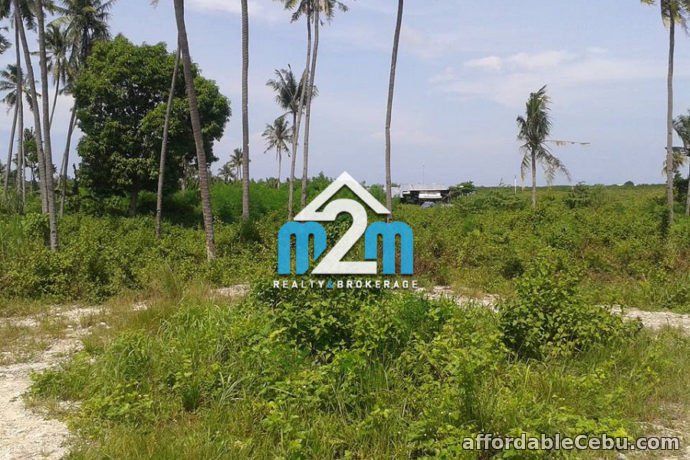 2nd picture of Breeze View Subdivision(LOT ONLY) Bang-bang, Cordova, Cebu For Sale in Cebu, Philippines